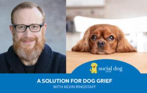 KevinRingstaff.com - Podcasting - Social Dog Podcast - Cindie Carter - 20210623