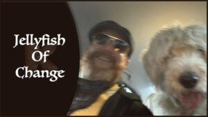 Jellyfish Of Change